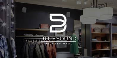 Bluesound Professional Banner